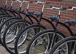 Fietsverhuur Bike Adventure - De Maasgaarde