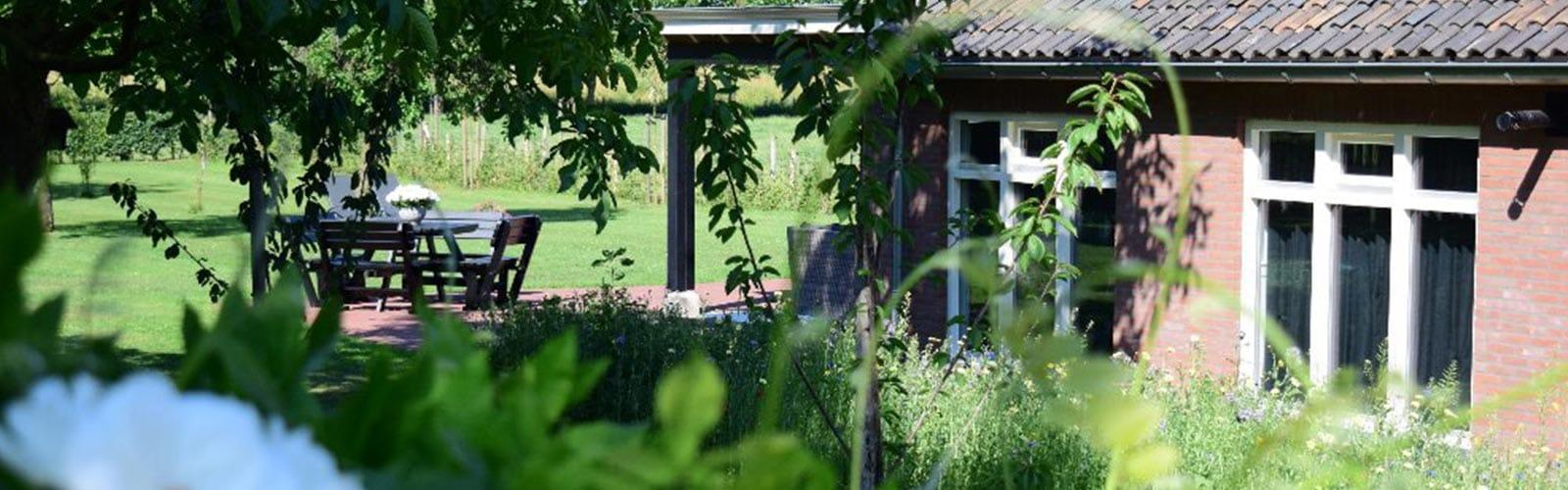 Tuin met planten bij De Maasgaarde